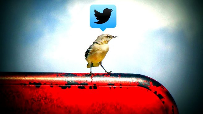 Twitter by Uncalno Tekno is shared under CC BY 2.0